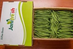 PR002-Extra-Fine-beans
