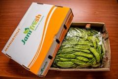 PR007-Mangetout-Bags