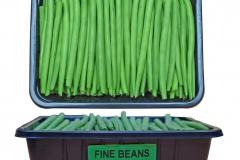 PR018-Fine-Beans-punnets-500g