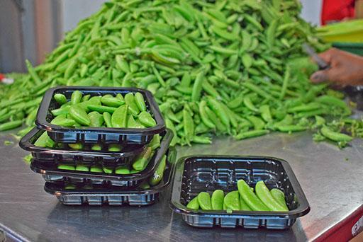 Jani Fresh French Beans
